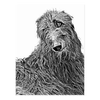 Scottish deerhound Noir und Blanc Postkarte
