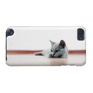 Scottish-Falten-Kätzchen-Katzen-superniedliches iPod Touch 5G Hülle