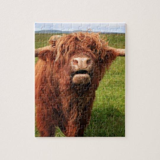 Scottish Highland Cattle - Scotland Puzzle