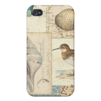 Seashell-Collage iPhone 4 Cover