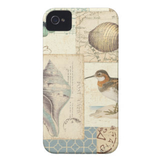 Seashell-Collage iPhone 4 Hüllen