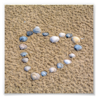 Seashellherz Fotodruck