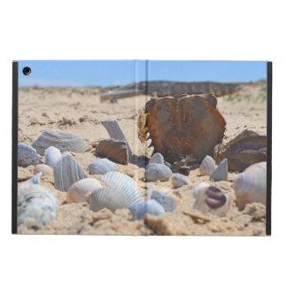Seashells auf dem Strand durch Shirley Taylor