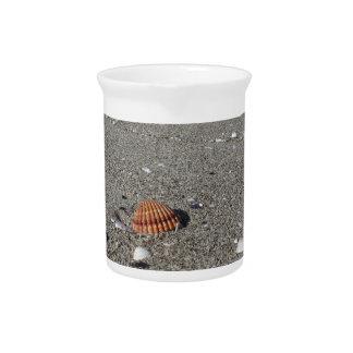 Seashells auf Sand. Sommerstrandhintergrund Getränke Pitcher