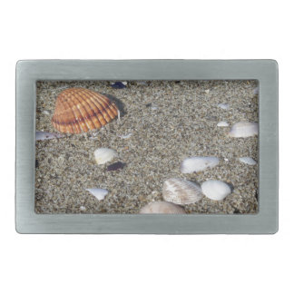 Seashells auf Sand. Sommerstrandhintergrund Rechteckige Gürtelschnalle