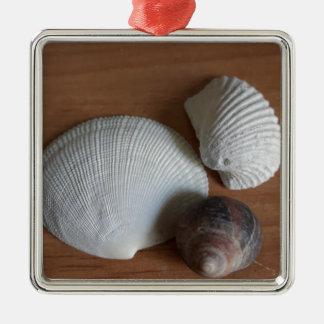 Seashells-hölzerner rustikaler Blick-Küstendekor Silbernes Ornament