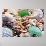 Seashells-, Starfish-u. Strand-Glas-Plakat Poster