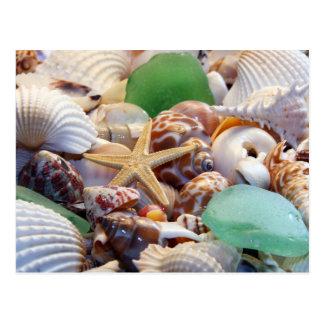Seashells Starfish u. Strand-Glas-Postkarte Postkarte