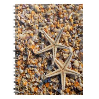 Seashells und Starfish Notizblock