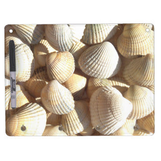 Seashellssammlung, trocknen Löschenbrett Trockenlöschtafel Mit Schlüsselanhängern