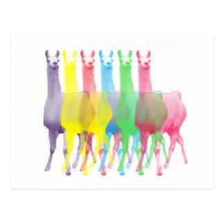 sechs Lamas in sechs Lamafarben Postkarte