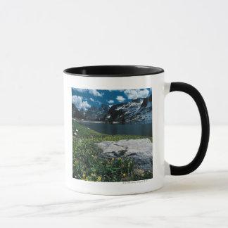 See-Einsamkeit, großartiger Teton Nationalpark, Tasse