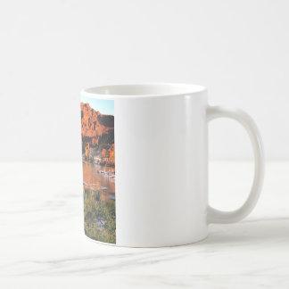 See-Virginia-Sierra Nevada Ains Kaffeetasse