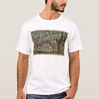 See Wales, FL - Ansicht im Freienvon Shuffleboard T-Shirt