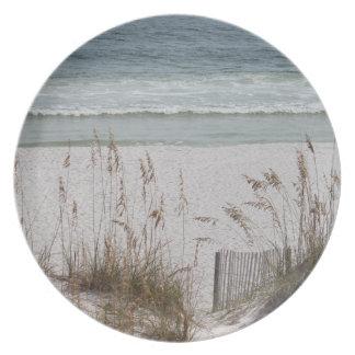 Seehafer entlang der Strand-Seite Teller