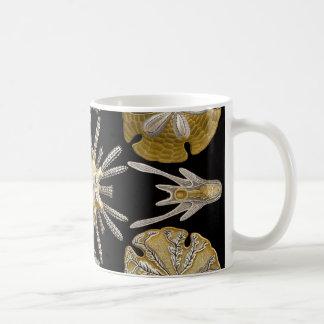 Seeigel Ernst Haeckels Echinidea Kaffeetasse