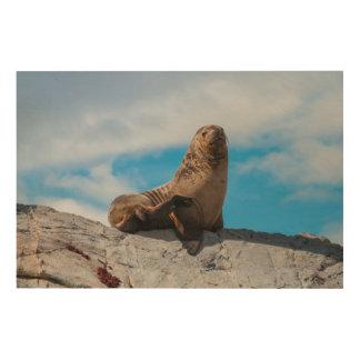 Seelöwe, der auf den Felsen stillsteht Holzwanddeko
