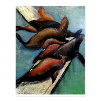 Seelöwen Postkarte