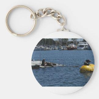 Seelöwen Schlüsselanhänger