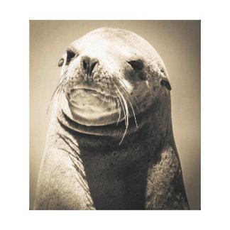 Seelöweporträt Leinwanddruck