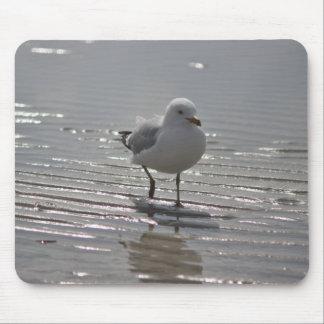Seemöwe am Strand Mousepad