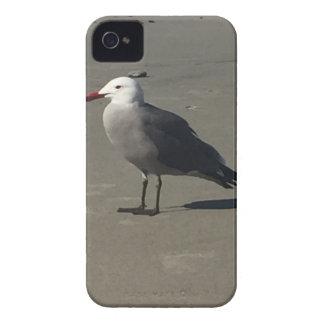 Seemöwe auf dem Strand Case-Mate iPhone 4 Hülle