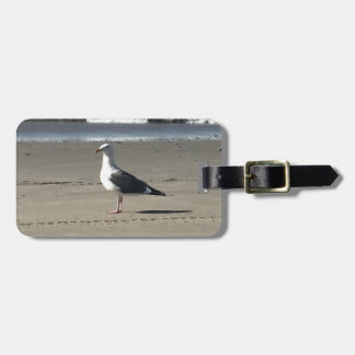 Seemöwe auf dem Strand Gepäckanhänger