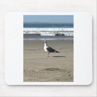 Seemöwe auf dem Strand Mousepad