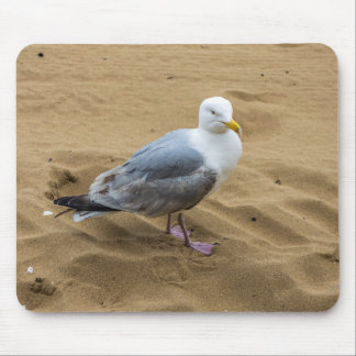 Seemöwe auf einem Strand mousepad
