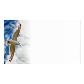 Seemöwe, die oben im Flug nah mit blauen Himmeln Visitenkarten