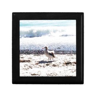 Seemöwe durch den Ozean auf dem Strandbild Geschenkbox