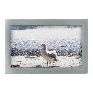 Seemöwe durch den Ozean auf dem Strandbild Rechteckige Gürtelschnalle