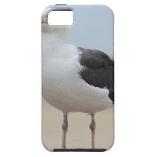 Seemöwe Hülle Fürs iPhone 5