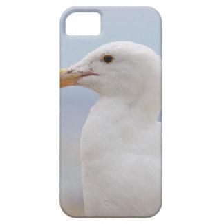 Seemöwe iPhone 5 Schutzhülle