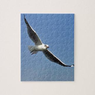 Seemöwen sind schöne Vögel Puzzle