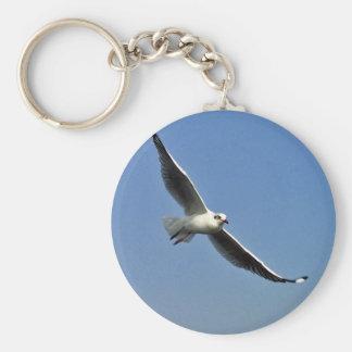 Seemöwen sind schöne Vögel Schlüsselanhänger