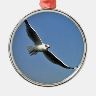 Seemöwen sind schöne Vögel Silbernes Ornament