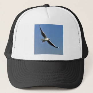 Seemöwen sind schöne Vögel Truckerkappe
