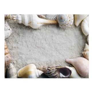 SeeMuschel-Sand-Hintergrund - Strand-Muscheln fert Postkarten