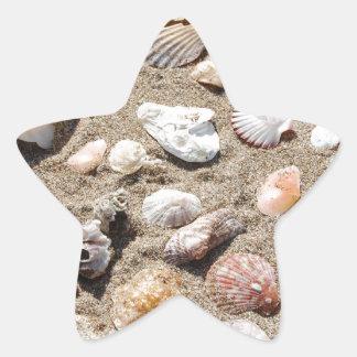 Seeoberteile Stern-Aufkleber