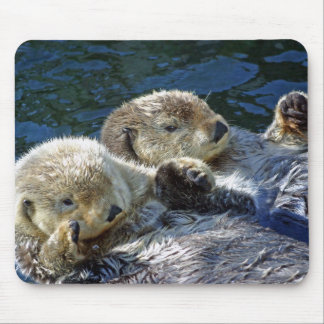 Seeotter Mousepads
