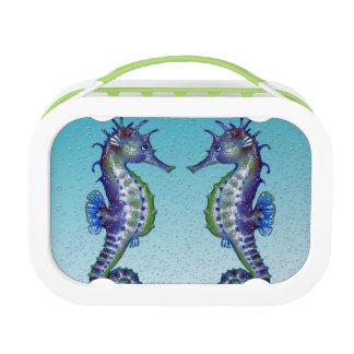 Seepferd-aquamarine Wasser-Tropfen Brotdose