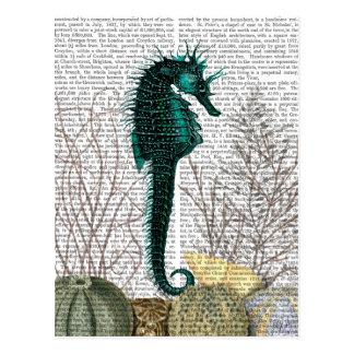 Seepferd und Seeigel 2 Postkarte