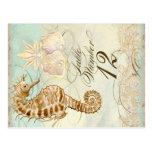 Seepferdeküstenstrand - Tischnummer-Postkarte