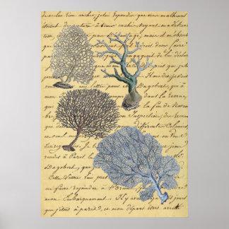 Seeschicker Küstenstrand der Skripte Korallenriff Poster