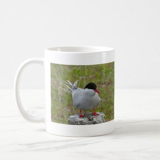 Seeschwalbe- Tern-  Vogel Tasse