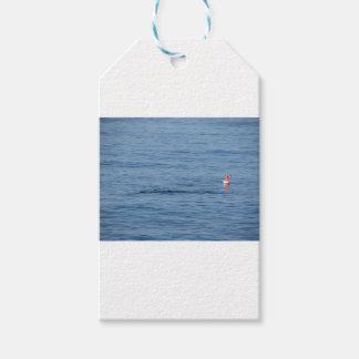 Seetaucher in Unterwasseratemgerät-Anzug Swim im Geschenkanhänger