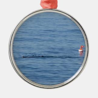 Seetaucher in Unterwasseratemgerät-Anzug Swim im Silbernes Ornament
