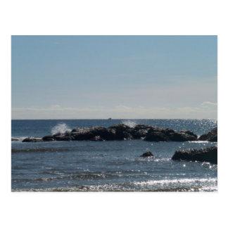 Seeufer-Postkarte Postkarte