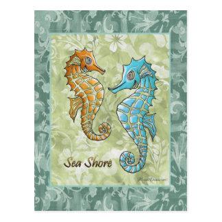 Seeufer-Seepferd-Postkarte Postkarte